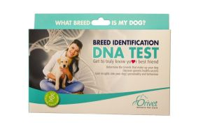 This image provided by Orivet shows the Breed Identification DNA Test kit. The kit helps identify the breeds of dogs via DNA testing. If you're stumped for a holiday gift, why not reach for the stuff of life, DNA. Gift ideas are plentiful, from coffee mugs and T-shirts to testing kits not only for dogs but humans, too. (Orivet via AP)