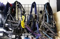 Cheshire Equestrian Center in Cheshire has various goods for sale, including these bridles.Steven Valenti/Republican-American