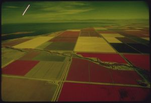 Fields in California's Imperial Valley irrigated with Colorado River Water (EPA photograph from Wikimedia Commons).