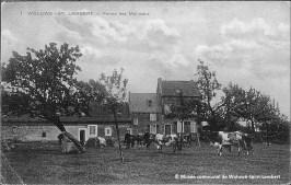 La ferme des Moineaux/Hof ter Musschen à Woluwe-Saint-Lambert (vers 1910)