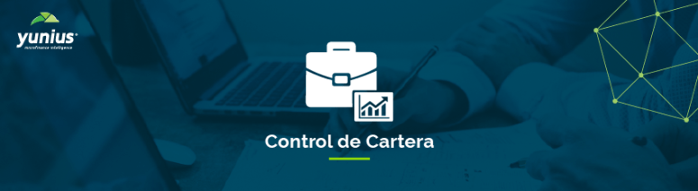 01modulos-control-cartera-01