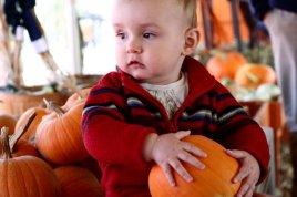 pumpkinpatch-sm-15