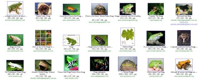 Frog - no filter