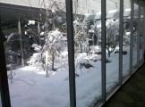 Snow in the office atrium