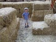 Apple Ridge Farms (2)