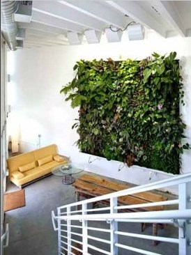 interior-vertical-garden