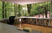 forest-book-nook-gluck-partners-9