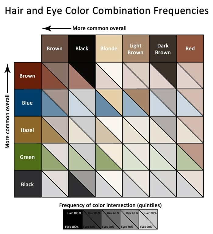 eye color chart, table showing hair and eye combination frequencies, from more likely on top, to less likely on bottom