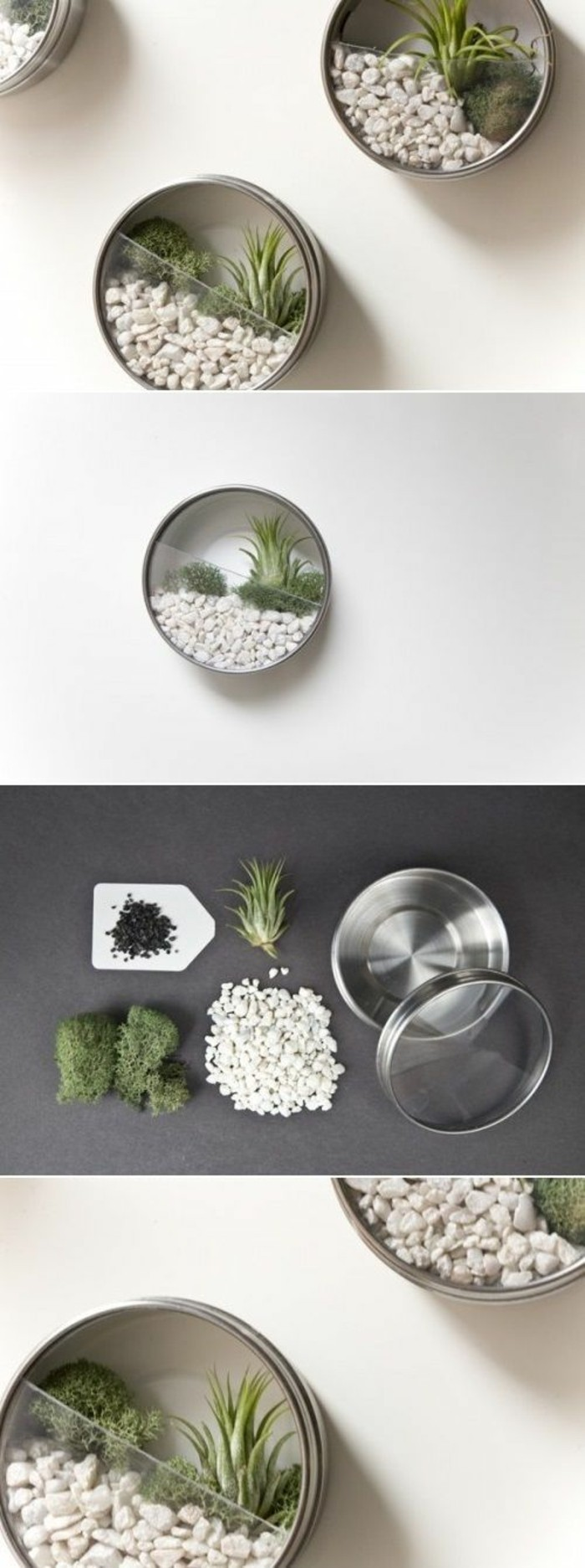 tin cans for crafts, three small round terrariums, with stones and tiny plants, photo shows materials used, small white pebbles, moss and little plant, metal tin with clear lid