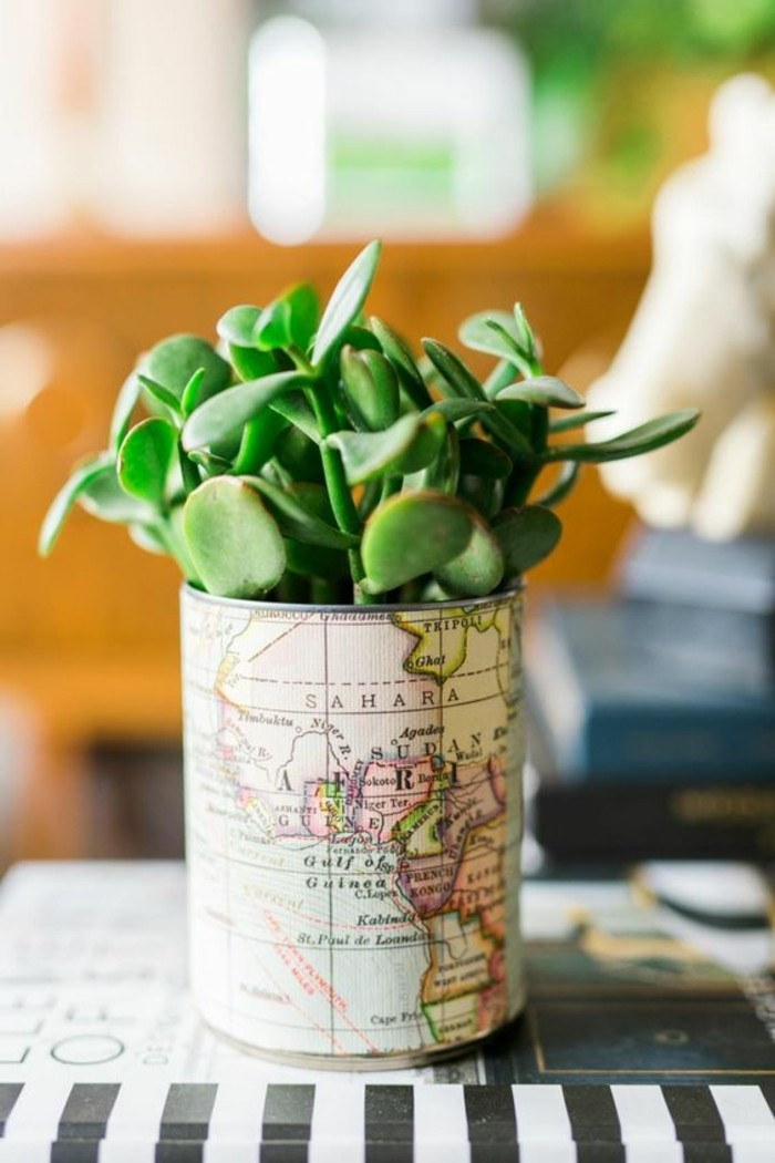metal tin containers, can decorated with map paper, containing a green succulent plant