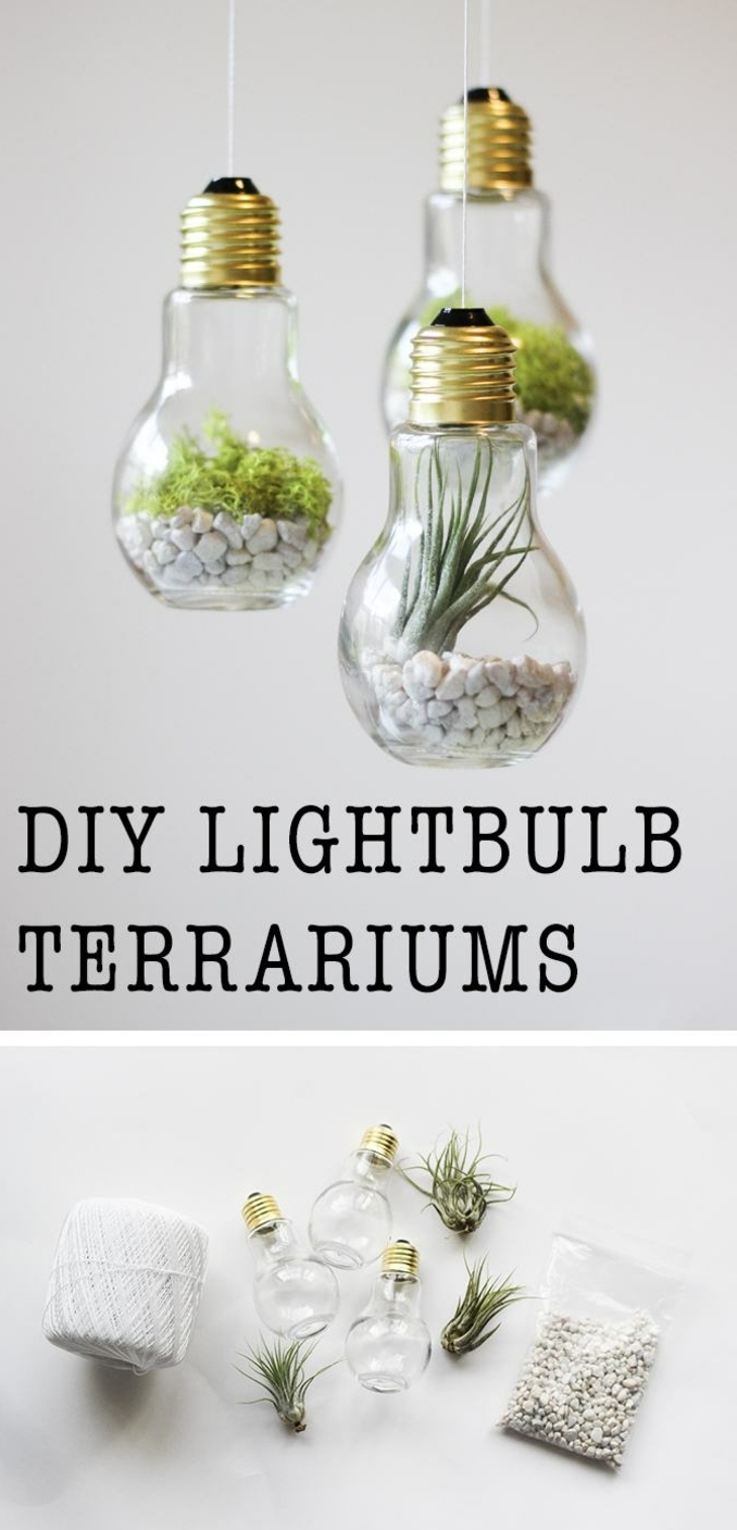 three lighbulbs hanging on white thread, filled with small white pebbles, moss and a succulent, art and craft ideas, second image shows needed materials