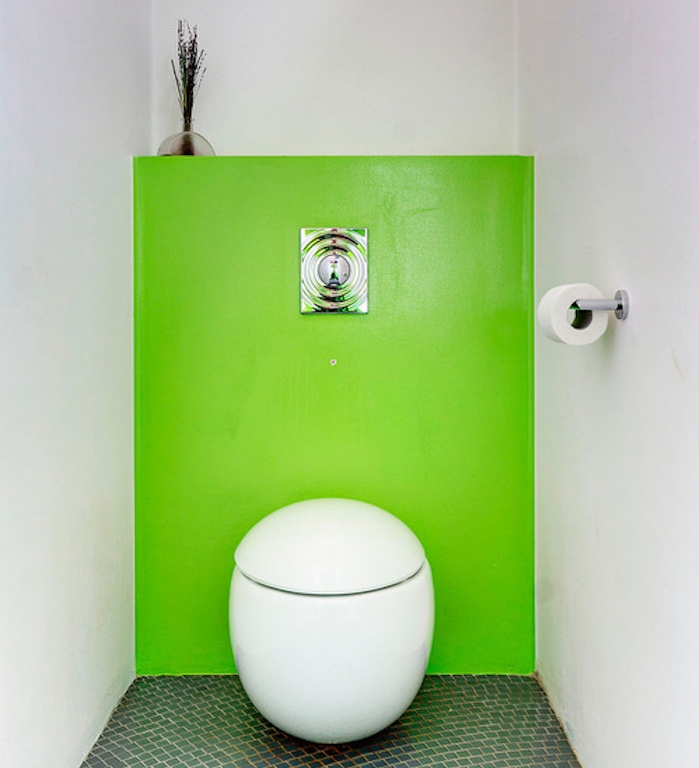 bathroom remodel, toilet with white and acid green walls, unusual oval toilet seat, dark green mosaic floor, decorative dried plant in clear vase