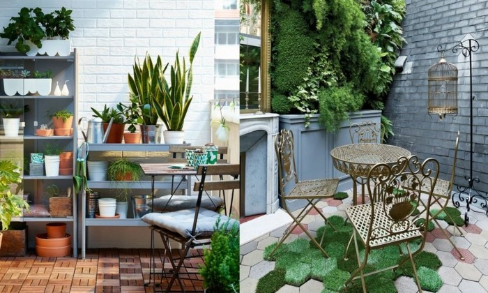 front porch decorating ideas, terrace with wooden floor, shelves containing potted plants and pots, small table and chairs, a lot of green plants on wall, moss in different shades on floor