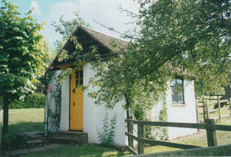 small white shed, with yellow door, with blossoming rose bush, and wooden fence, surrounded by trees with green leaves
