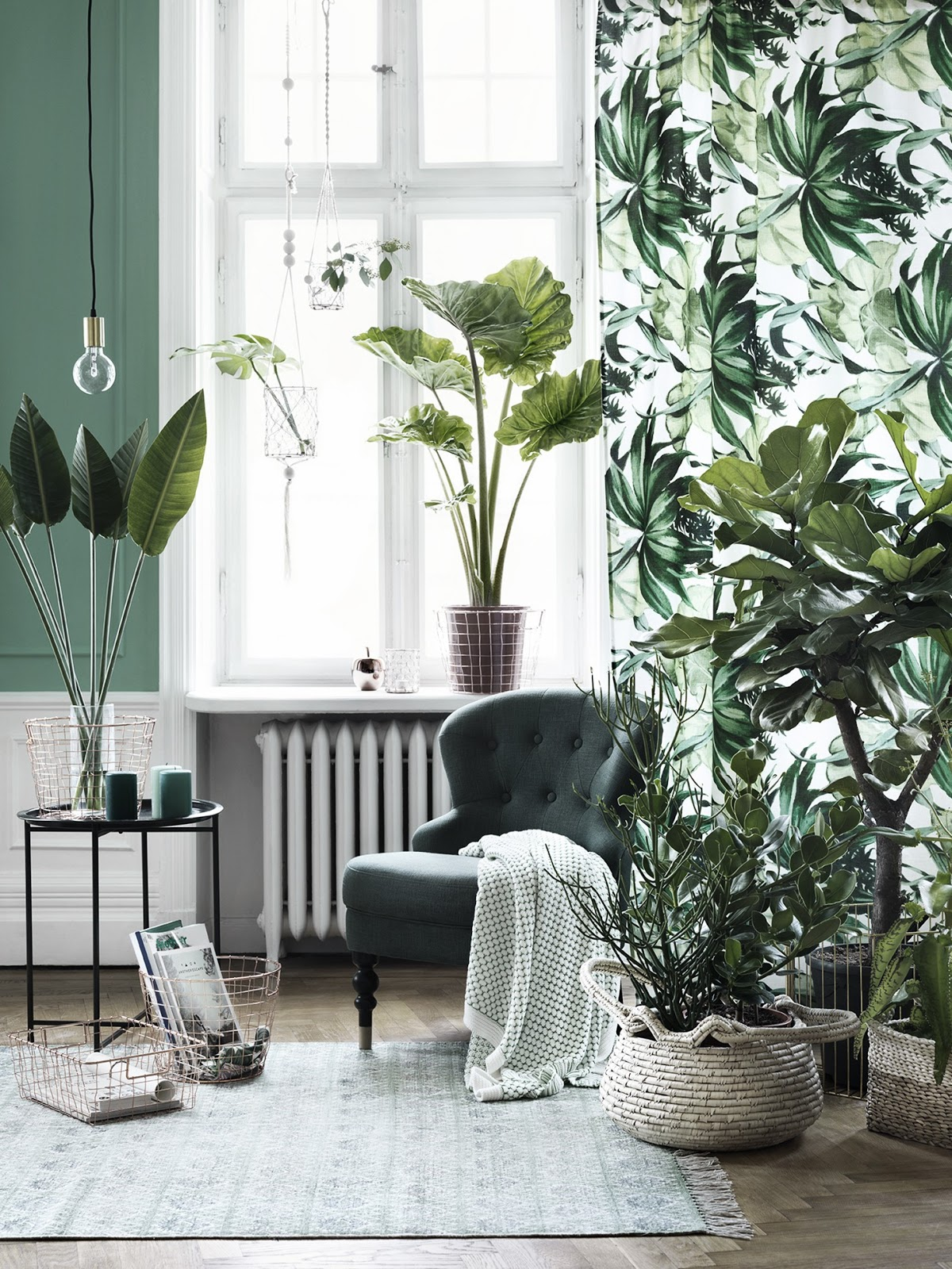 living room with cold pastel green wall, and white paneling, large window with white and green curtain, with botanical print, several different indoor plants, dark green cozy chair and small metal table