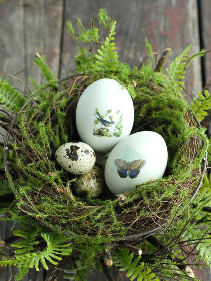 ferns and moss, decorating a nest made of twigs and straw, containing two hen's eggs, decorated with stickers of a butterfly and a bird, and several plain quail's eggs