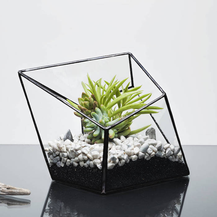 edgy modern planter, with black details, containing fine black pebbles, and bigger white stones, with succulents and air plants