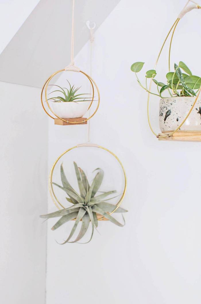 minimalist hanging planters, made from brass hoops, pieces of wood, and white rope, good mothers day gifts, air plants in white bowls