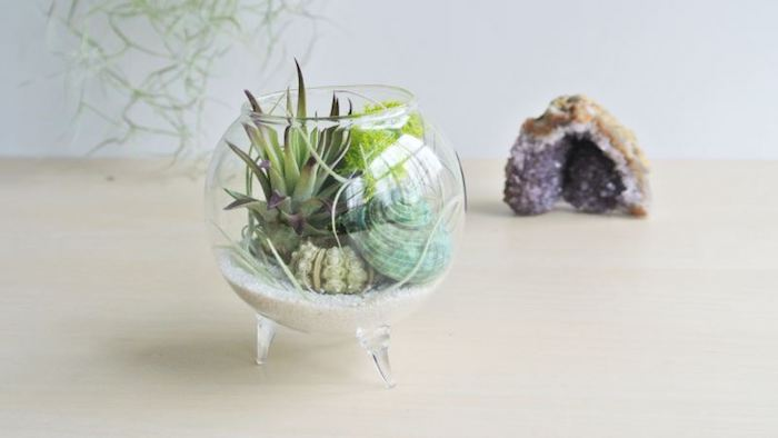 crystal in purple and beige, near glass bowl, with small legs, containing tillandsia plants, sand and seashells