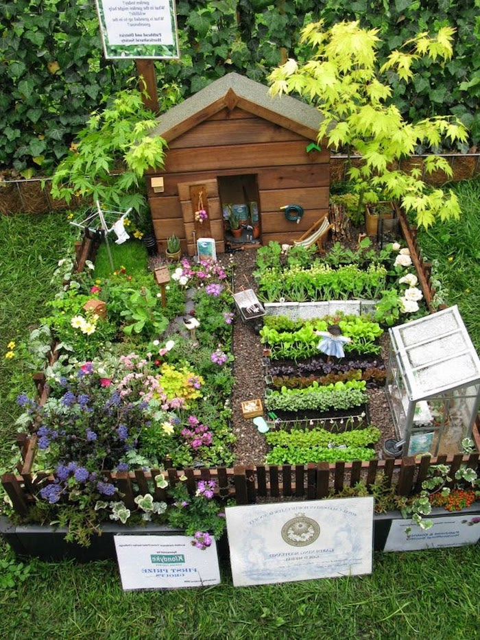 vegetable and flower beds, of miniature size, inside a tiny garden, fairy garden pictures, with small wooden shed, and glass greenhouse