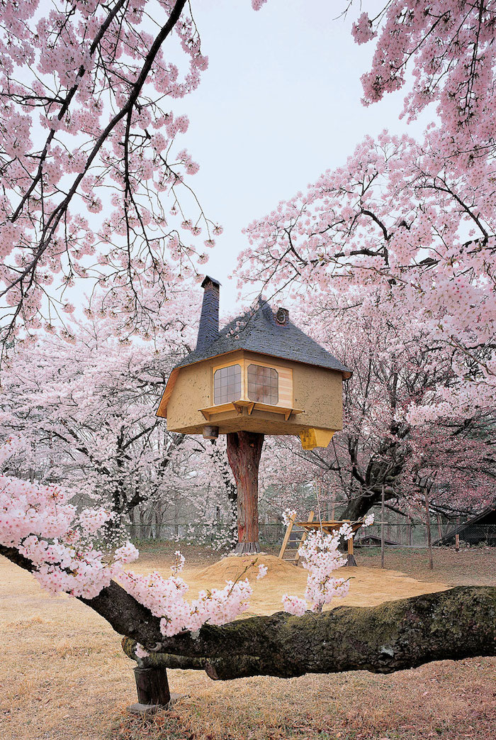 japanese aesthetic inspired adult treehouse, built on a tall stump, in the middle of a sakura cherry tree garden