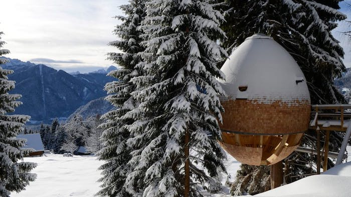 snow-covered mountains, egg-shaped structure, nestled between large fir trees, modern capsule-like treehouse