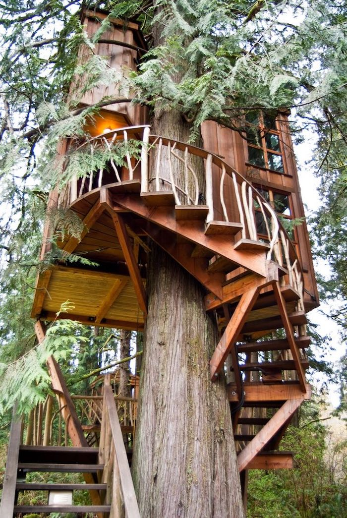 old fir tree, with a small wooden tree house built around it, winding wooden stairs, small terrace with a lit lamp