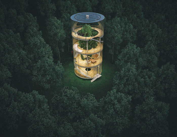 tubular glass structure, with four stories, built around a large green tree, cool tree houses, surrounded by a dark green forest