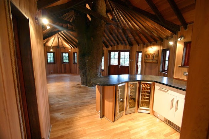 laminate floor and ceiling beams, kitchen cabinets and small fridges, several windows and a framed artwork, treehouse ideas, living tree in the centre