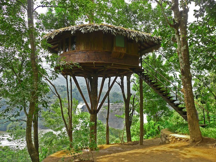 branches or palm leaves, covering a round wooden hut, built on a platform on top of a tall tree, and accessible through a staircase