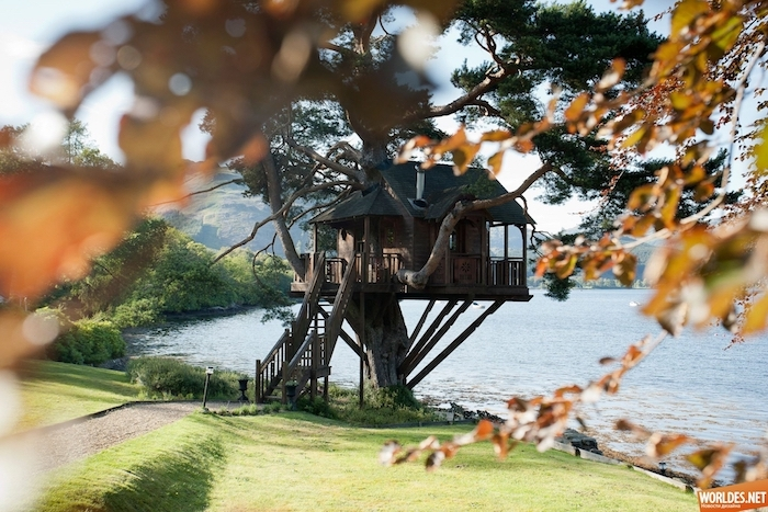 big house with wooden staircase, built on a large old tree, overlooking a lake, treehouse designs, green field and trees