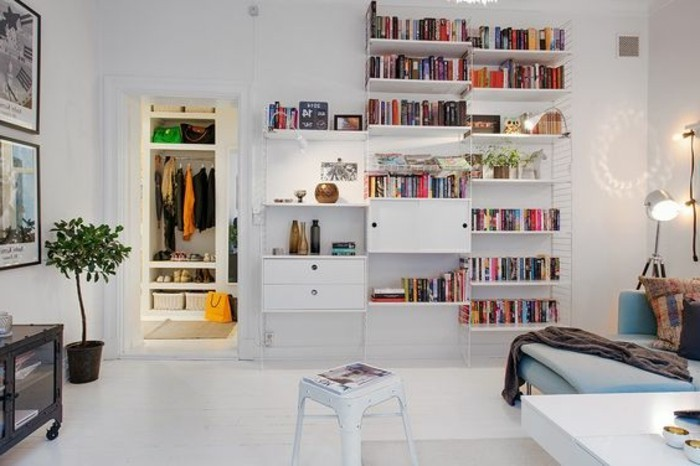 tall bookshelves with lots of books, and other items, inside a white room, with a small wardrobe, a pale blue settee, and an indoor plant