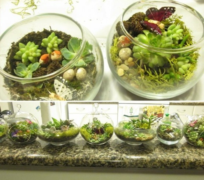 succulent terrariums made of glass, two round ones, filled with soil, a few green succulents, and small decorations, inexpensive thank you gift ideas, six more similar containers, in different shapes