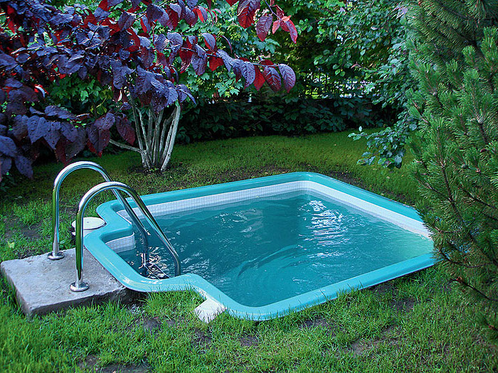 dipping pool in blue, very small but deep, surrounded by various shrubs, in a garden with green grass