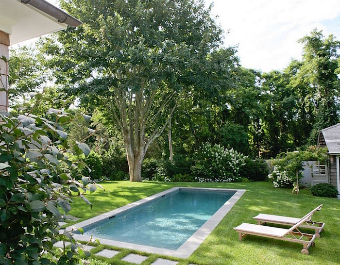 classical rectangular pool, in a garden with green grass, shrubs and a tall tree, with a shed and two sun beds