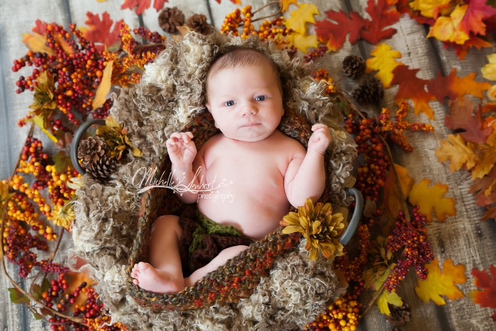 basket lined with beige and cream wool, containing a very young baby, dressed in dark green knitted nappies, baby thanksgiving outfits, fall leaves in different colors, and decorative branches, with small orange berries