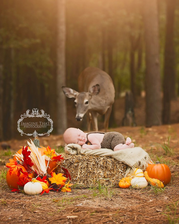 fall leaves in different colors, pumpkins and gourds, surrounding a newborn baby, dressed in brown knitted overalls, sleeping on a cream blanket, placed on top of a hay stack, deer and woods in the background