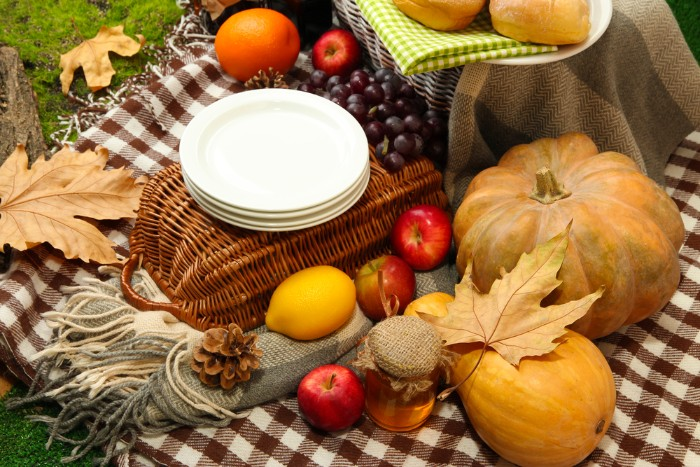 checkered blanket in brown and white, covered with apples, grapes and pine cones, with a jar of honey, an orange and a lemon, a gourd and a pumpkin, thanksgiving card messages, placed on ground covered in green moss