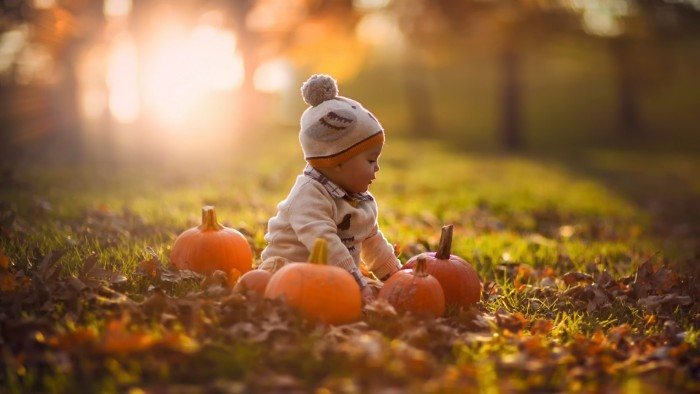 baby sitting on a lwan, surrounded by several orange pumpkins, and dry fall leaves, happy thanksgiving wishes