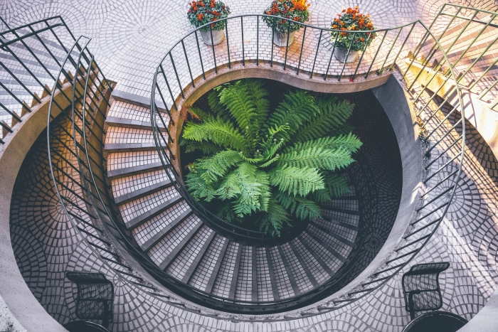 circular staircases, green living plant, red flowers, how to choose the best design for your staircases