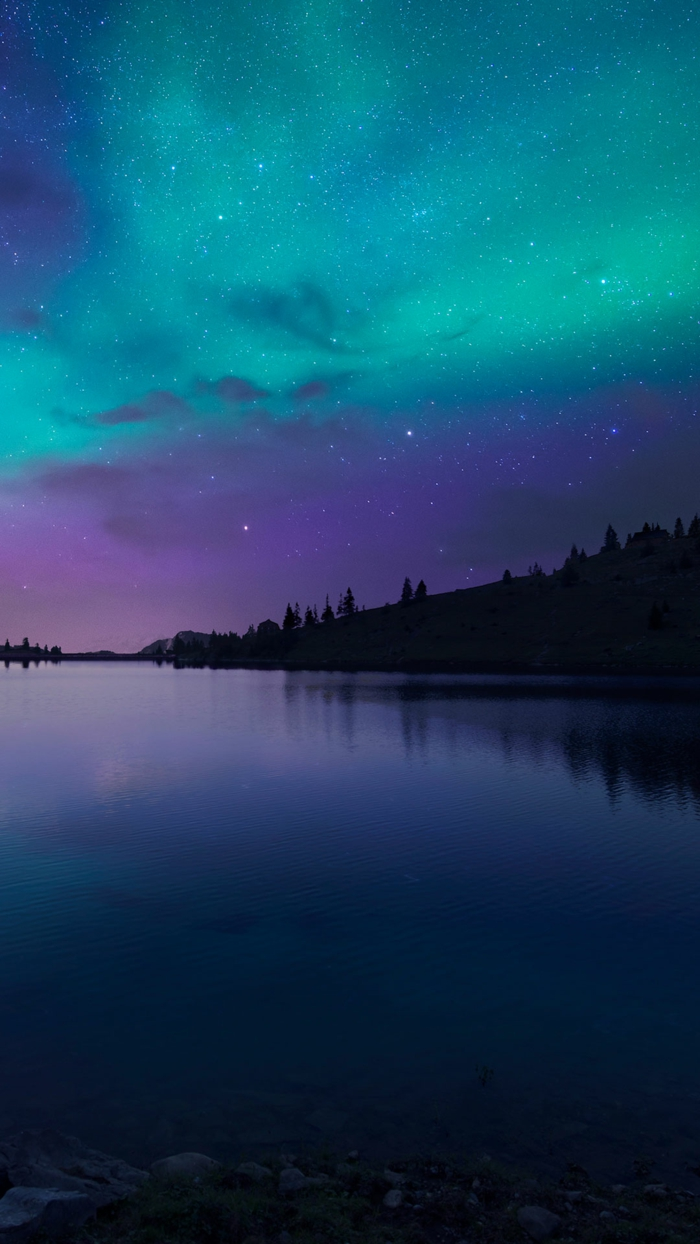 northern lights, starry sky, summer iphone wallpaper, trees around a lake