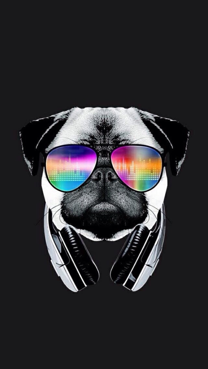 black background, best iphone backgrounds, pug with colourful sunglasses and headphones