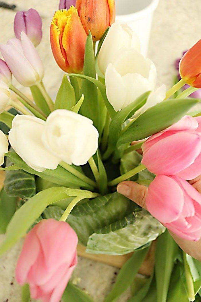 easter decorating ideas, large bouquet of tulips, inside a cabbage, diy tutorial