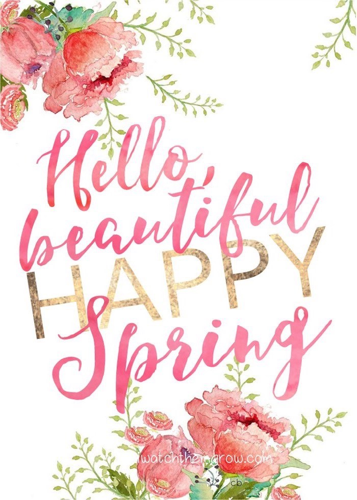 hello beautiful, happy spring quote, drawings of roses, phone background, images of spring