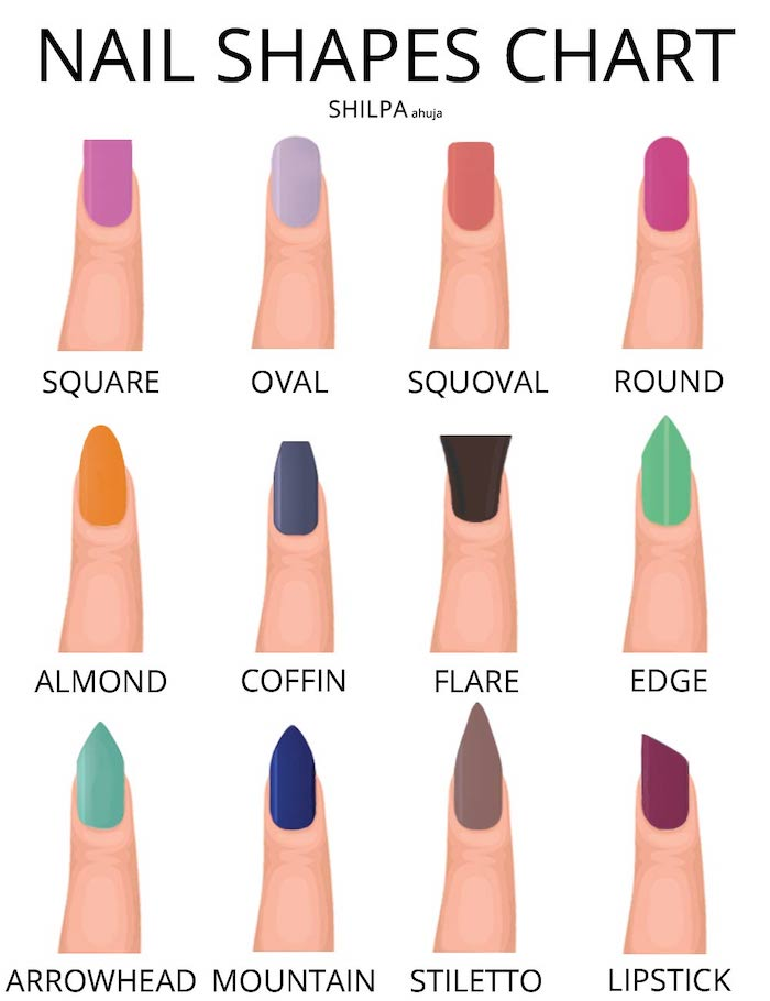 nail shapes chart, nail ideas, different nails drawn with different colours, on a white background