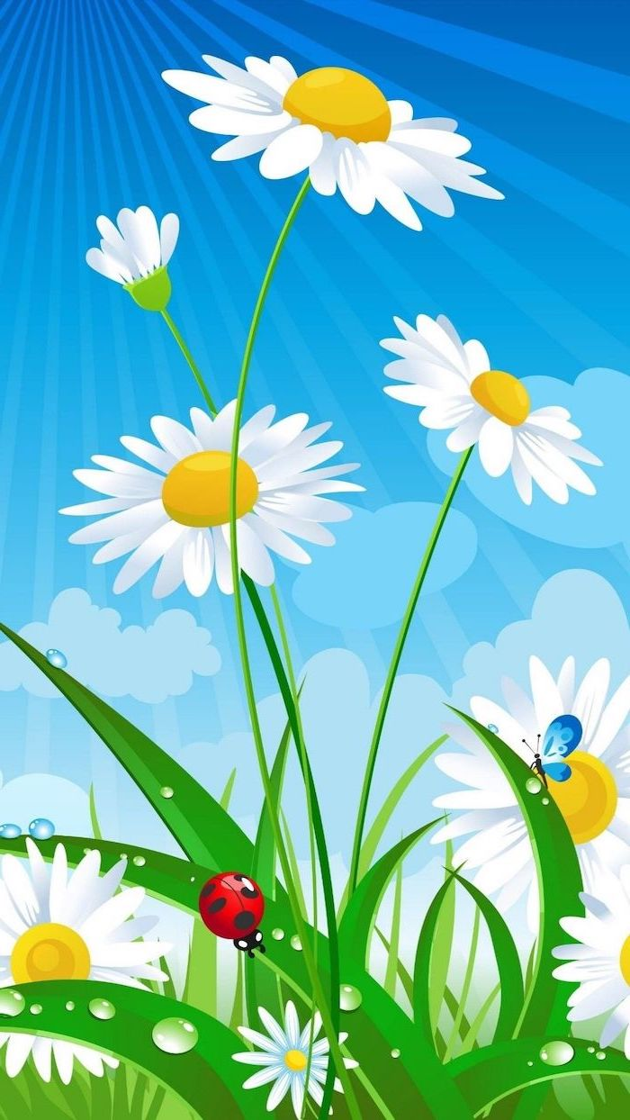 drawing of daisies, with a butterfly and a lady bug, phone background wallpaper, spring desktop wallpaper