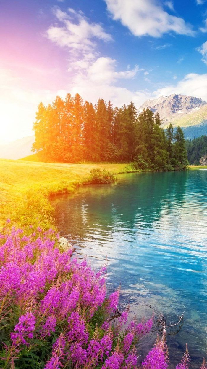 mountain landscape, phone wallpaper, happy spring images, trees and flowers, along a large lake