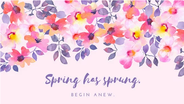 spring has sprung begin anew quote, drawing of flowers, spring cover photo, pink background