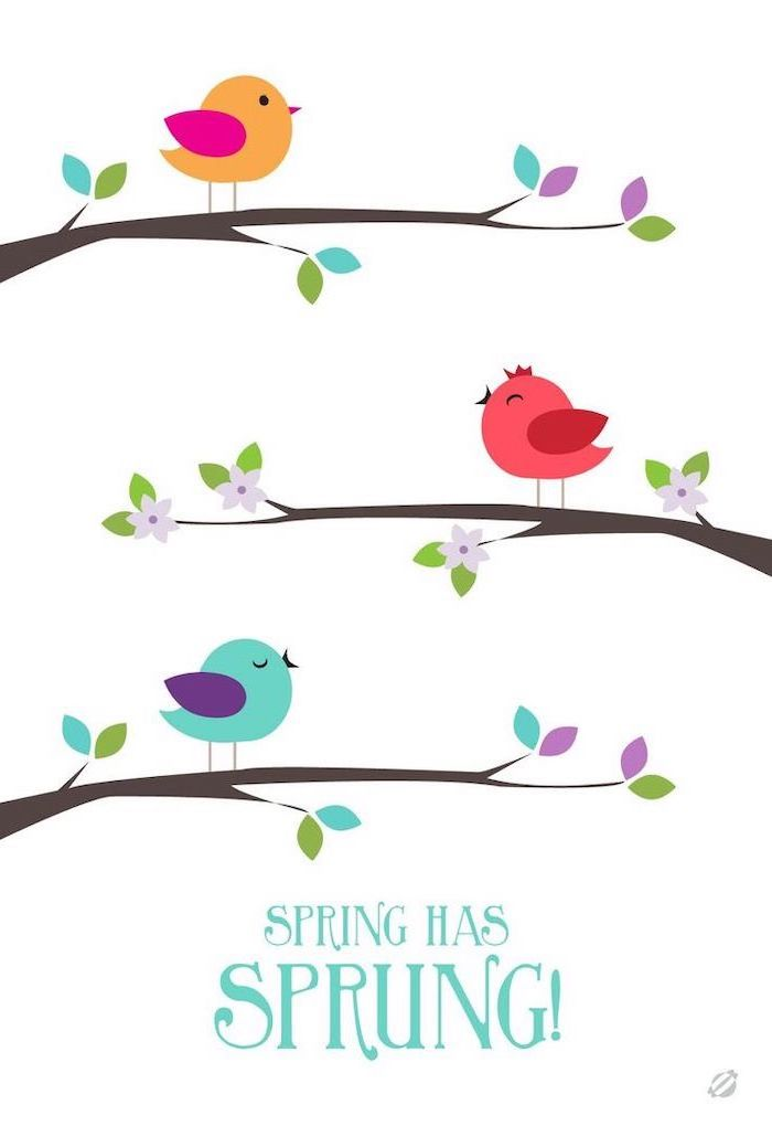 spring has sprung quote, phone wallpaper, three birds on tree branches drawn, spring wallpaper