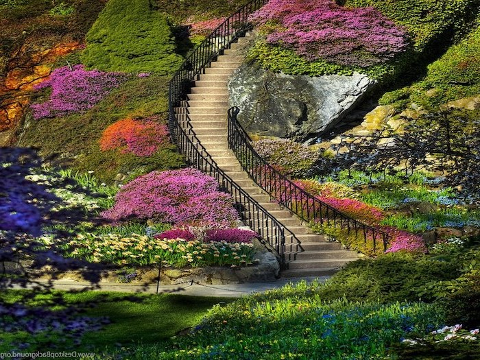 long staircase, flowers and bushes along the staircase, spring cover photo, rocks and moss